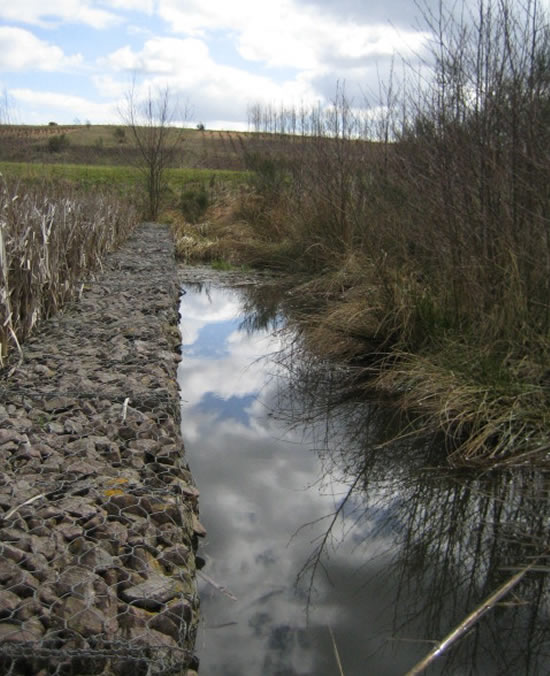 Stilling pool and gabion in system 2 reed bed 2