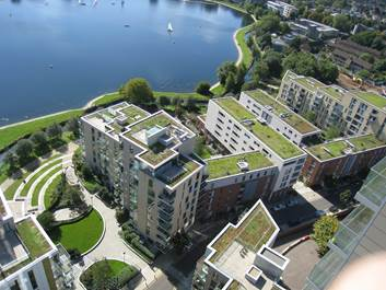 Green roofs @ Woodberry Down