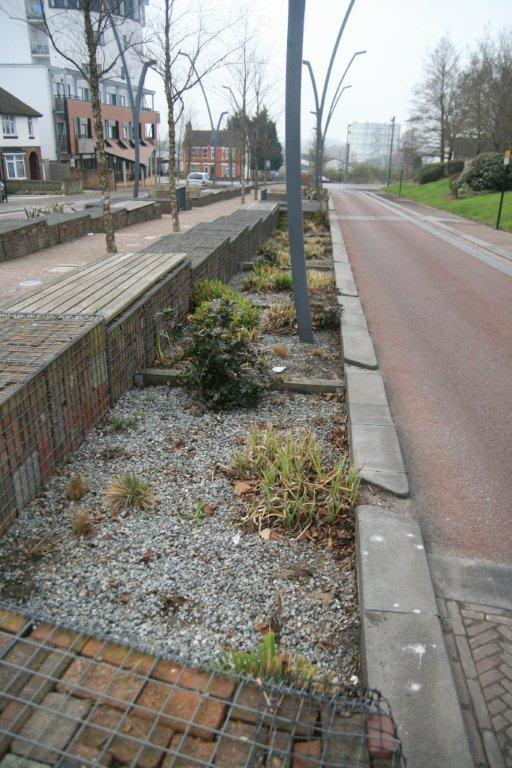 SuDS bioretention area