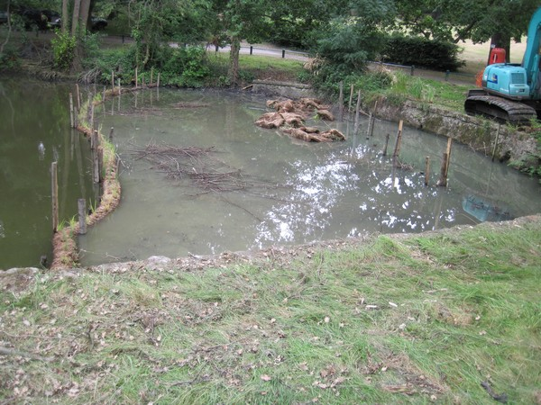 Wetland construction