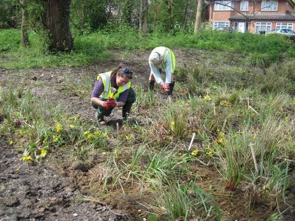 Volunteers planting SuDS components