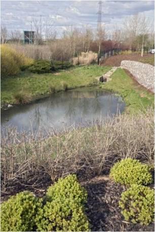 Bristol business park for Design of detention pond