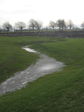 Figure 3 SuDS Swale