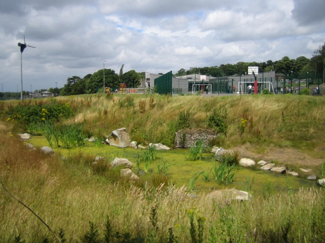 SuDS Forest Way School Swale