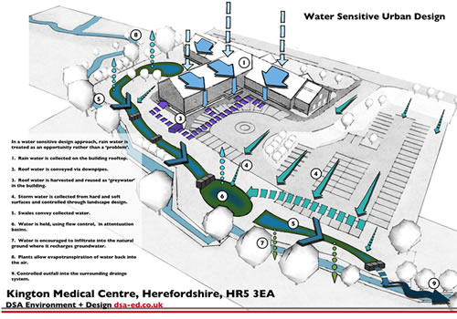 Illustrated SuDS diagram showing the movement of water through the site