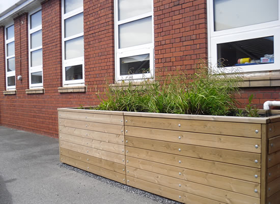 Rain planter on the car park elevation of the school